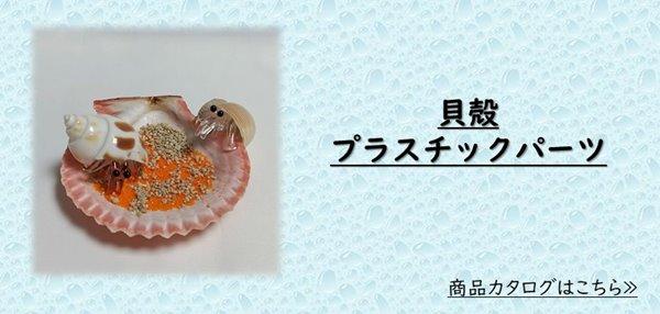 貝殻,プラスチックパーツ